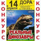 Розыгрыш билета на выставку динозавров!
