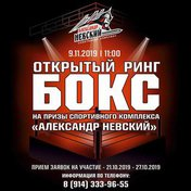 II открытый ринг по боксу