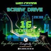 Screw drive
