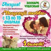 Поцелуй любви!