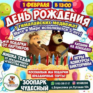 День рождения у гималайских медвежат