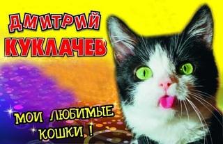 «Мои любимые кошки»