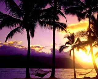 «Ночь в Гавайях»