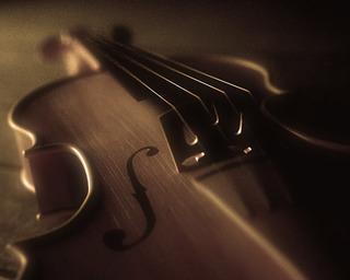 Концерт Александра Папушева
