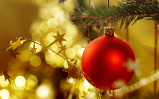 «Зимние каникулы у новогодней ёлки»