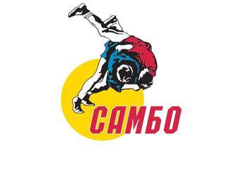 ДВ турнир по борьбе самбо