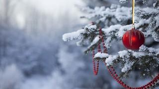 «Рождественские гулянья»