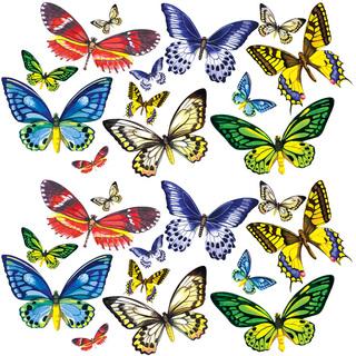 Посмотрите живых тропических бабочек – бесплатно