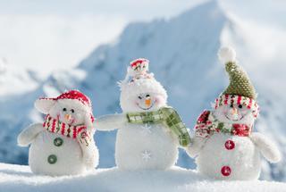 «Снежная фантазия»
