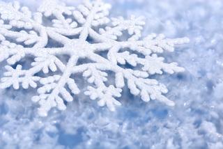 «Всемирный День Снега»
