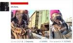 Образ девочки-самоубийцы из Уссурийска в соцсетях превращают в