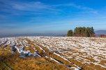 Заявления на предоставление «Дальневосточного гектара» в Уссурийске подали 56 жителей Приморья