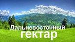 Уже восемь приморцев получили свой Дальневосточный гектар в Уссурийском городском округе
