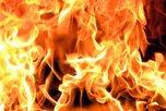 Огнеборцы Уссурийска потушили дачный домик на улице Казачья