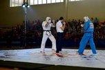 В День города впервые в Уссурийске прошел открытый турнир боевых единоборств