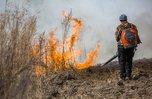Особый противопожарный режим введен в Уссурийске