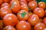 Сибирские овощи завезут в Приморье