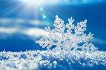Снег в Уссурийске ожидается в конце второй и начале третьей декады января