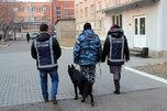 Полицейские и дружинники провели антинаркотическое мероприятие в Уссурийске
