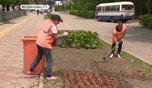 Жители Уссурийска включились в борьбу за почетное экологическое звание