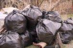 Около 500 кубометров мусора вывезли с несанкционированных свалок в Уссурийске
