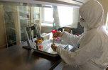 Почти 1700 приморцев заболели коронавирусом с начала эпидемии