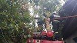 Аварийные бригады восстанавливают электроснабжение в селах Уссурийска