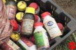 Свыше 220 кг опасных пестицидов обнаружили в Уссурийске
