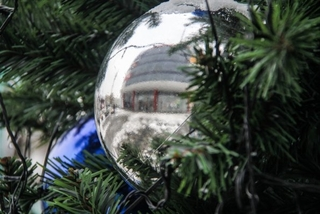 Кремлевскую ёлку в этом году посетят дети из Уссурийска