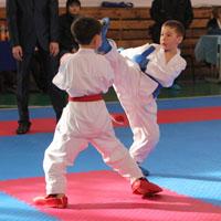 Уссурийские спортсмены стали победителями первенства Находкинского городского округа по каратэ