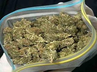 Уссурийские полицейские изъяли у местного жителя полкилограмма марихуаны