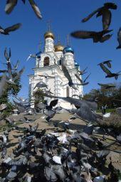 Делегация Владивостокской епархии выехала для участия в Поместном Соборе
