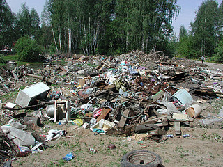 Сельхозрабочие из Китая после овощей «вырастили» мусорные свалки под Уссурийском