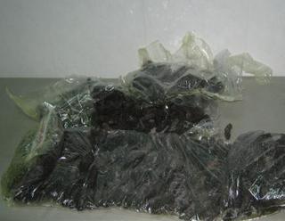 Уссурийские таможенники обнаружили 4,5 килограмма незаконно перемещаемого трепанга