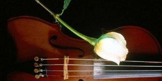 Почти 200 скрипачей соберут на одной сцене в Уссурийске