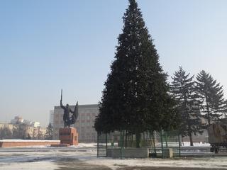 Главную елку Уссурийска установили на центральной площади