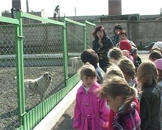 Экскурсия в питомник служебного собаководства