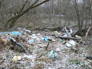 Овощевод из Китая устроил свалку мусора под Уссурийском