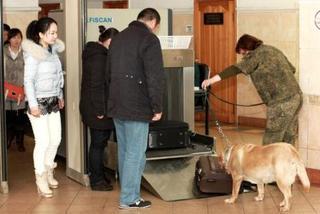 Более двух миллиардов рублей перечислила в бюджет Уссурийская таможня