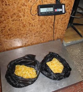 48 килограммов янтаря и опала пытались вывезти в Китай из Уссурийска