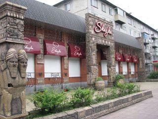 Небезопасные морепродукты обнаружены в уссурийском кафе «Сказка»