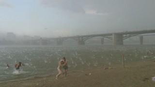 Внезапный ураган в Новосибирске