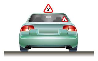 Многие автошколы в Приморье находятся на грани закрытия