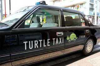 В Японии набирает популярность черепашье такси