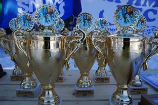 Собачья упряжка из догов выиграла соревнования по ездовому спорту в пригороде Уссурийска