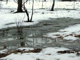 В Уссурийск пришло долгожданное потепление, но не надолго