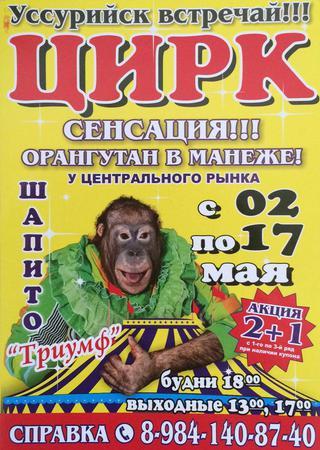 В Уссурийск приехал цирк!
