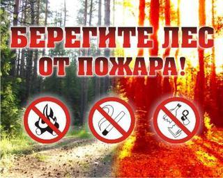 20 мая на территории Уссурийского городского округа прекращается особый противопожарный режим