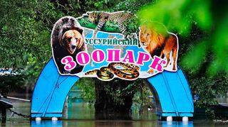 В Уссурийске пройдут общественные слушания по поводу строительства нового зоопарка