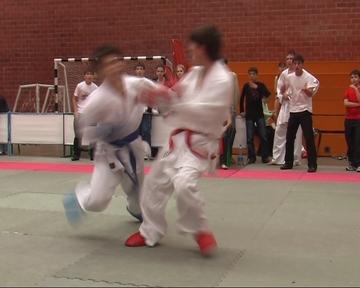 Karate_sochi